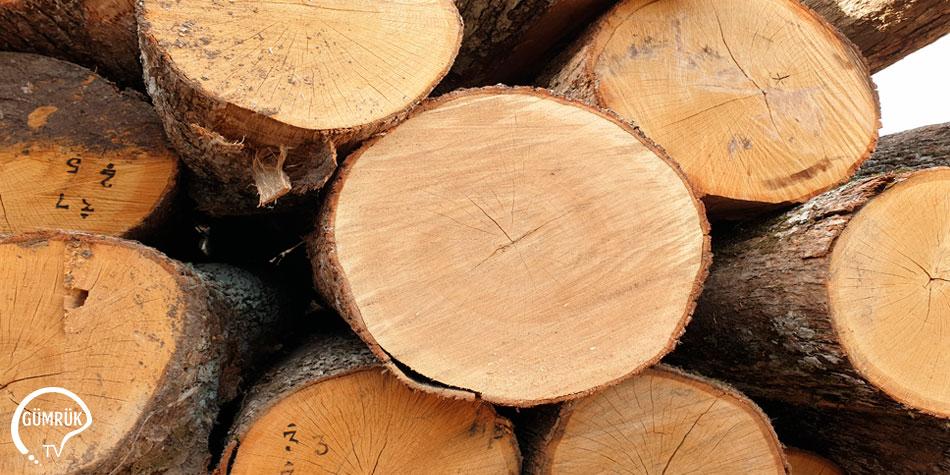 Orman Ağacı Tomruklarının İhracının Kayda Bağlanması