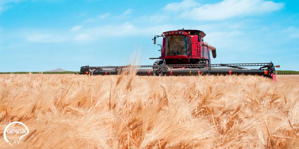 Filipinler'in Tarımsal Üretimde İthalata Bağımlılığı Devam Ediyor